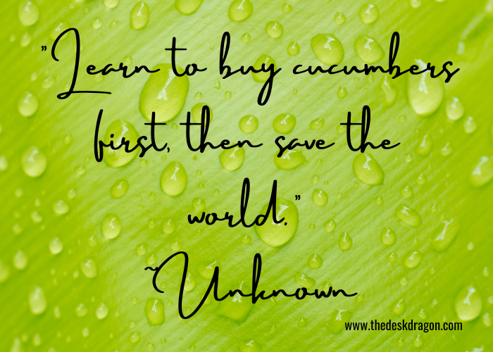 Learn to buy cucumbers then save the world quote